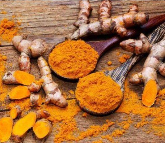 Makanan Penguat Imunitas Tubuh